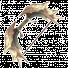 Refometi Bow